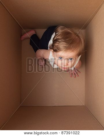 Little Baby In The Box