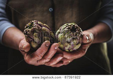 Artichoke In Hands