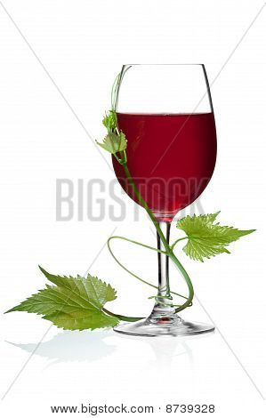 red wine and grape leaves