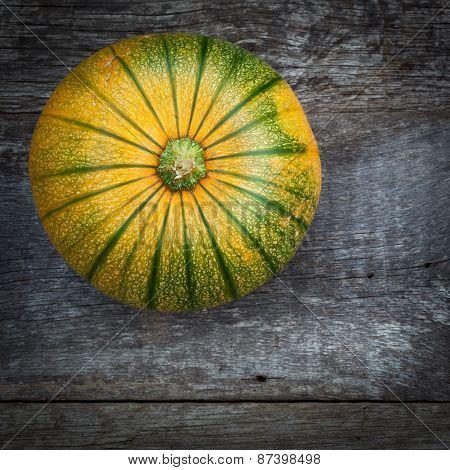 Fresh Organic Gardening Vegetables