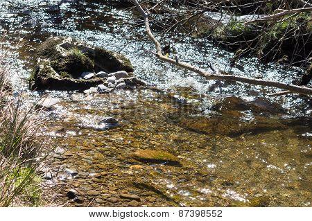 Small stream in Pistyll Rhaeadr