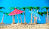 image of paysage  - two small umbrellas on a beach with palm trees - JPG