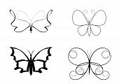 image of transformation  - butterfly set in black - JPG