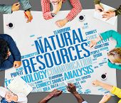 picture of environmental conservation  - Natural Resources Conservation Environmental Ecology Concept - JPG