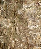 stock photo of homogeneous  - Stone background close up at high resolution - JPG