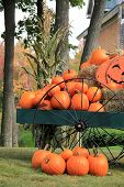 picture of wagon  - Colorful orange pumpkins with grinning Jack - JPG