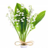 stock photo of white lily  - White flowers lilies of the valley isolated on white background - JPG