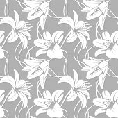 picture of lillies  - Vector lilly seamless pattern - JPG