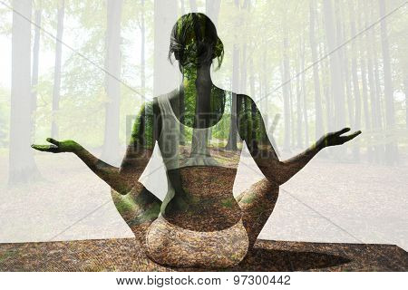 Fit woman sitting in lotus pose against tree trunks in the forest