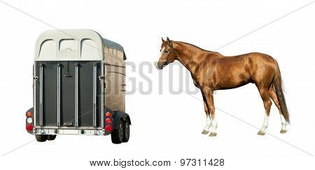Horse And Horse-transport Isolated On White