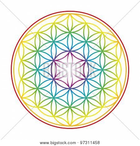 Flower Of Life Colorful Vibrant Glow
