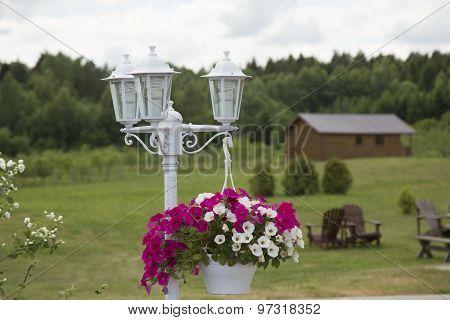 Lantern And Flower Pot