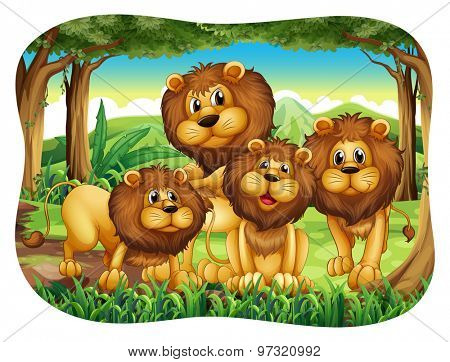 Four lions living in the forest