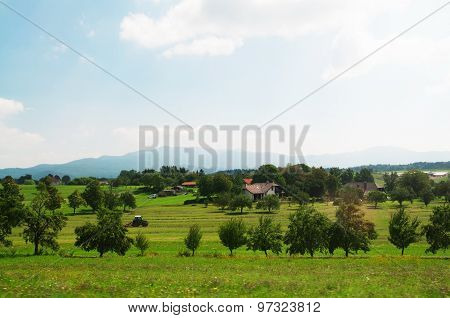 Country Side Slovenia