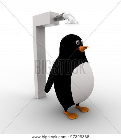 3D Penguin Standing Under Shower Concept