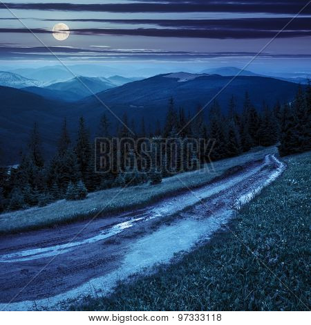 Road Through Conifer Forest In Mountains At Night