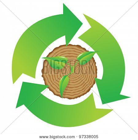 Tree stump and green plant shoot  with recycle symbol, vector illustration