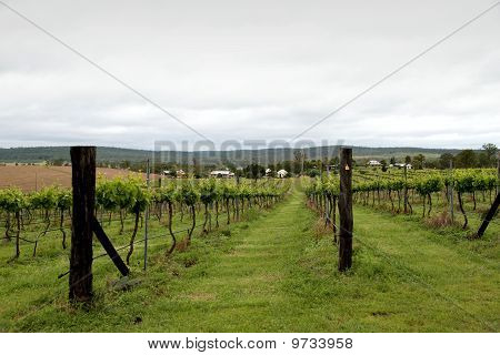 Chapel in the Vines