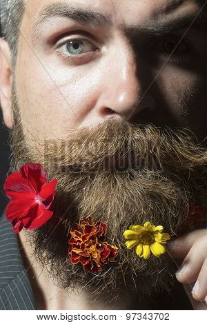Guy With Flowerbed On Beard