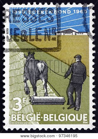 Postage Stamp Belgium 1965 Farmer With Horse-drawn Roller