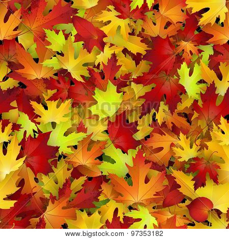 Vector Seamless Pattern With Red And Yellow Autumn Leaves, Natural Backdrop