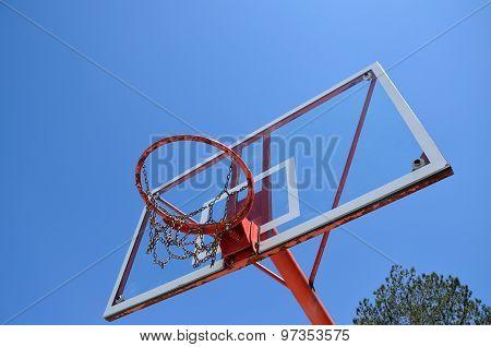 Basketball Hoop And Tree