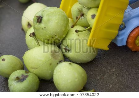 Offloading Fruits