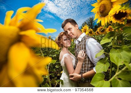 Happy Embracing Couple On The Sunflowers Field Background.