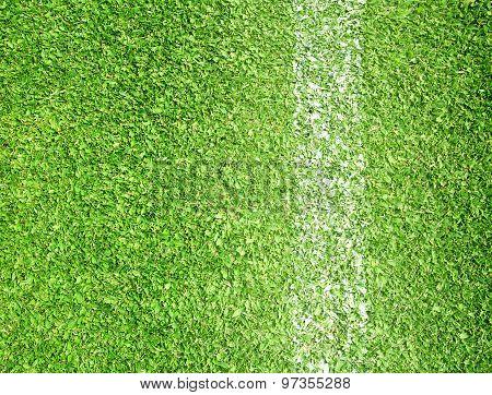 Lawn Football Field Borders