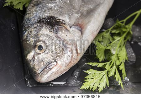 details of sea bream and vegetable on a black plate