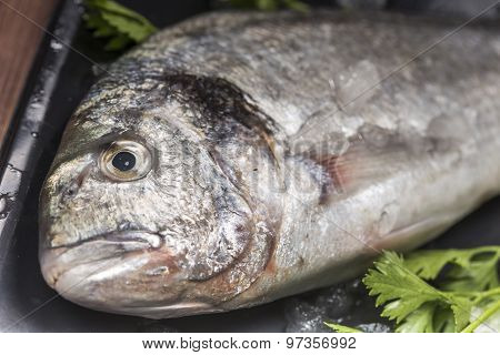 details of a sea bream and vegetable on a black plate