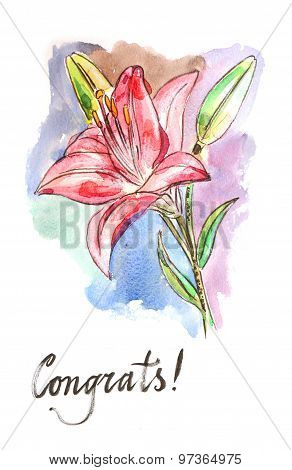 Watercolor Vector Lilies
