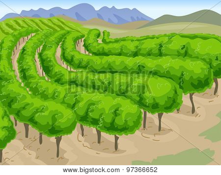 Scenic Illustration of a Long Stretch of Vineyard with Mountains in the Background