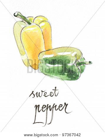 Watercolor Sweet Pepper