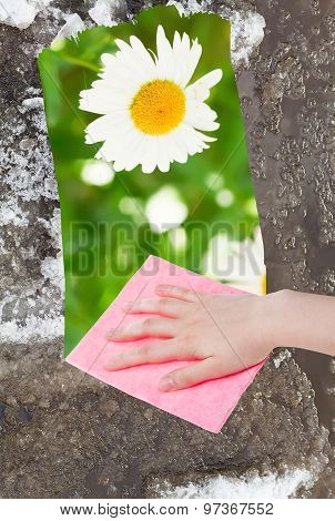 Hand Deletes Melting Snow By Pink Cloth