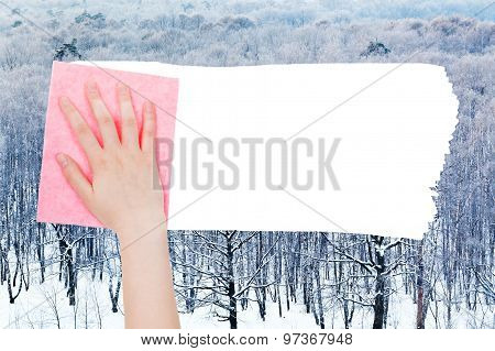 Hand Deletes Winter Woods By Pink Rag