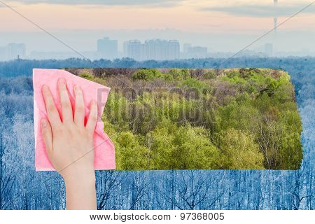 Hand Deletes Winter Frozen Trees By Pink Cloth