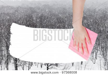 Hand Deletes Snow Over Woods By Pink Rag