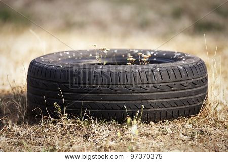 Old tire polluting the nature