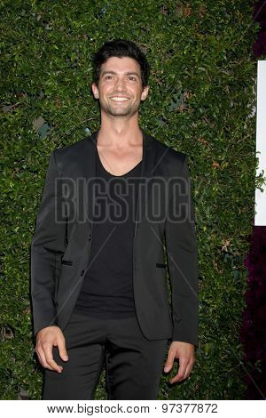 Gavin O'ConnorLOS ANGELES - JUL 29:  David Alpay at the Hallmark 2015 TCA Summer Press Tour Party at the Private Residence on July 29, 2015 in Beverly Hills, CA