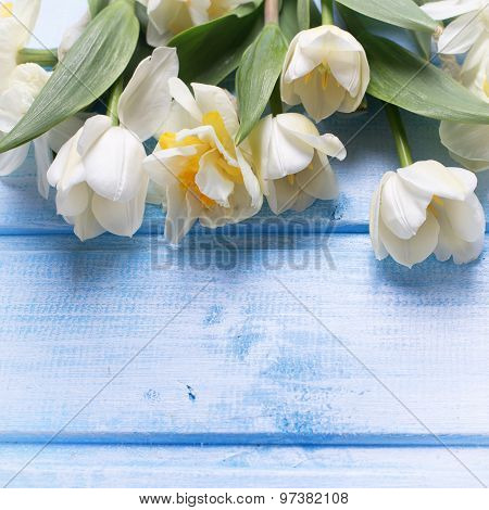 Postcard  With Fresh Narcissus And Tulips