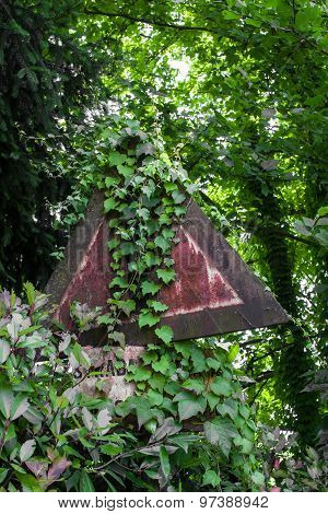Road Sign Overgrown