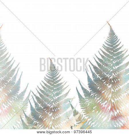 Illustration Of Fern Leaves On White Background. Foliage Design