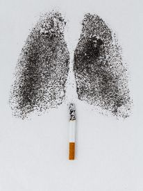 picture of charcoal  - Shape of lungs with charcoal powder and cigarette on white background - JPG