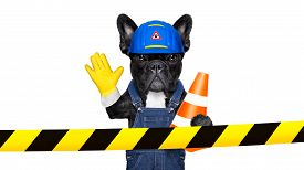 foto of safety barrier  - worker dog with helmet behind warning tape work in progress and stop gesture isolated on white background - JPG