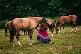 picture of shepherdess  - Beautiful gypsy in violet dress with horses  - JPG