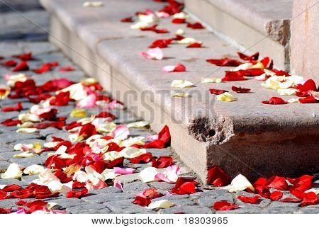 Rose Petals On A Stone Staircase After Wedding Ceremony