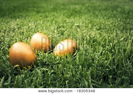 Big Golden Eggs On The Grass To Represent Wealth And Luck