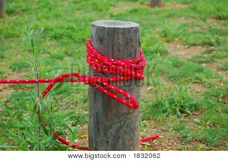 Red Rope Tieup