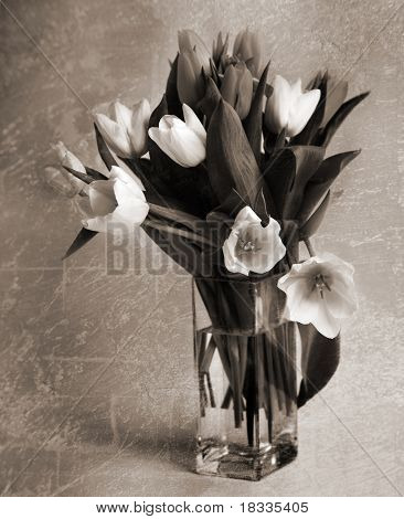 Bouquet of tulips in the vase. Style of old photos. Sepia